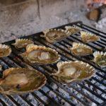 Tavern Vidrovaca Hrana-5